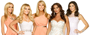 real-housewives-orange-county-season-9
